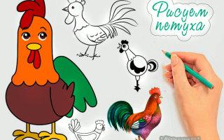 Самостоятельно рисуем волшебного петуха при помощи карандаша