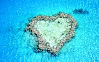 Фото «День, когда всё напоминает нам о Любви»