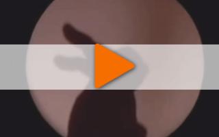 Видео «Эти руки — не для скуки»