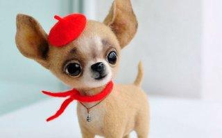 Войлочные очаровашки. Собачки от дуэта MamaDocha (35 фото)