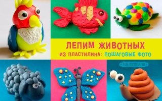 Лепим забавных зверей и животных из пластилина: поэтапные инструкции