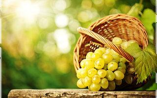 Притча «Виноградная гроздь. Круговорот любви»