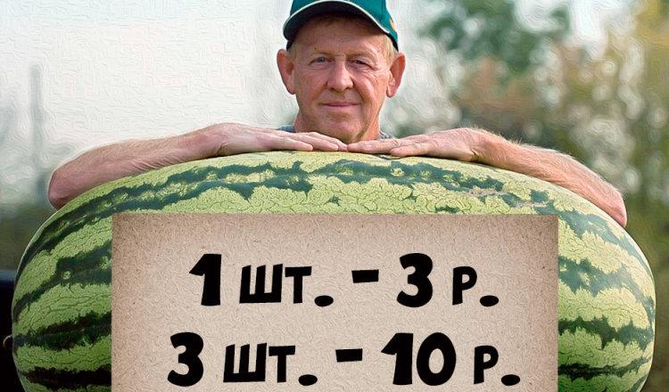 Притча «Своя коммерция» (Владимир Шебзухов)