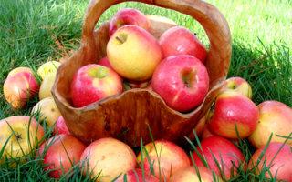 Притча «Ведро с яблоками»