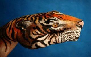 Фото «Животные на руках» (необычное творчество)