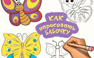 Каждая бабочка мечтает быть нарисованной вами!