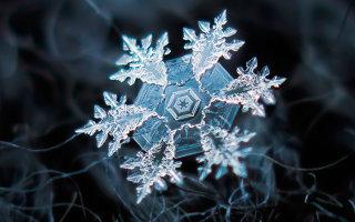 Фото «Снежинки — Застывшая красота»