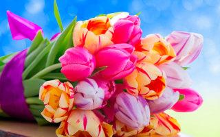 Цветы. Классные картинки на рабочий стол