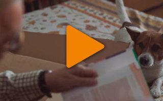 Трогательный рождественский ролик, который поможет поверить в свои силы