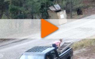 Видео «Делай добро — и убегай!»