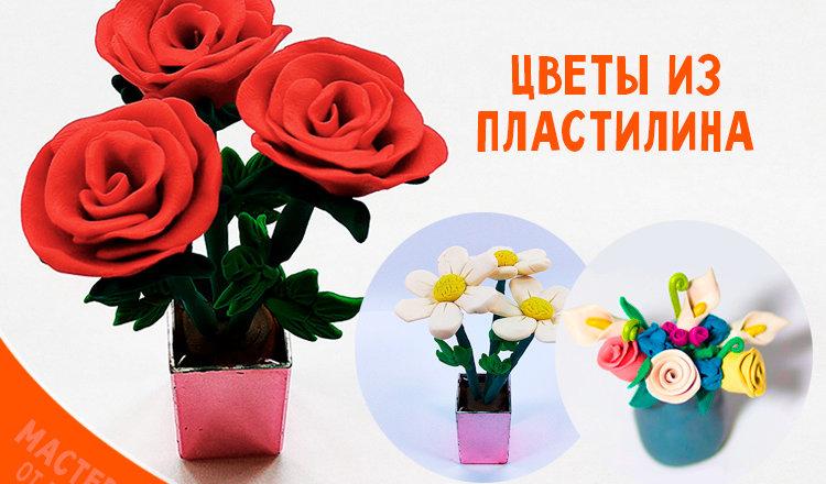 Лепим с детьми пластилиновые цветы: пошаговая инструкция с фото
