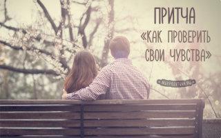 Притча о чувствах, которая поможет отличить истинные от ложных