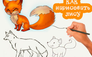 Рисуем красивую лису карандашом, даже если ты совсем не художник