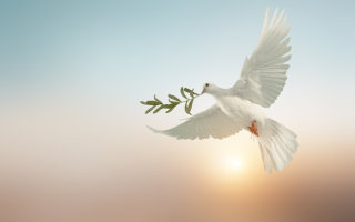Давайте быть за Бога и людей (Ирина Самарина)