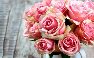 Фото цветов на любой вкус