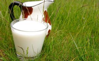 Притча «Погоня за молоком»