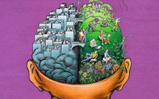 Как можно заставить свой мозг работать на полную