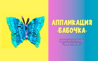Делаем аппликацию Бабочка вместе с детьми