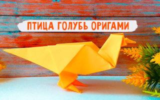 Как сделать оригами птицу (голубя) из бумаги: пошаговая инструкция