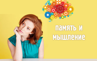 Как взрослому человеку развить мышление и память