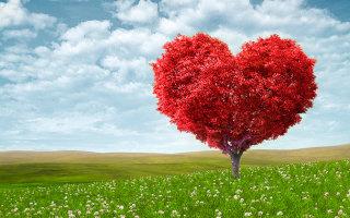 Стихотворение «Любовь»