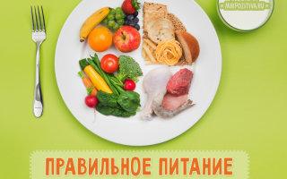 Золотые принципы правильного питания