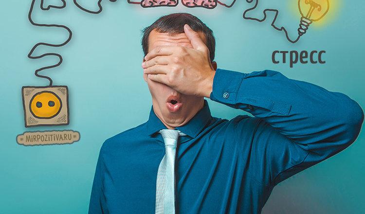 Анекдот «Огромный стресс»