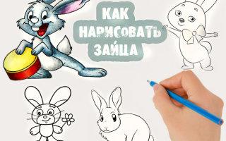 Как поэтапно нарисовать пушистого зайца карандашом