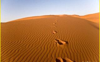 Притча «Двое в пустыне»