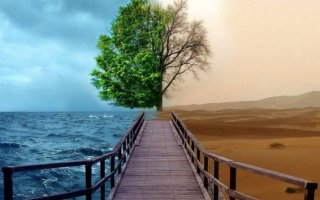 Притча «В чём же разница?»