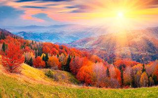 Картинки волшебной природы, от которых тепло и радостно