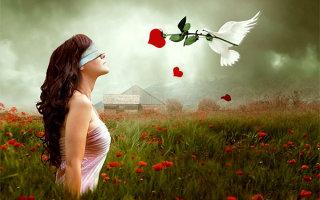 Притча «История о слепой любви»
