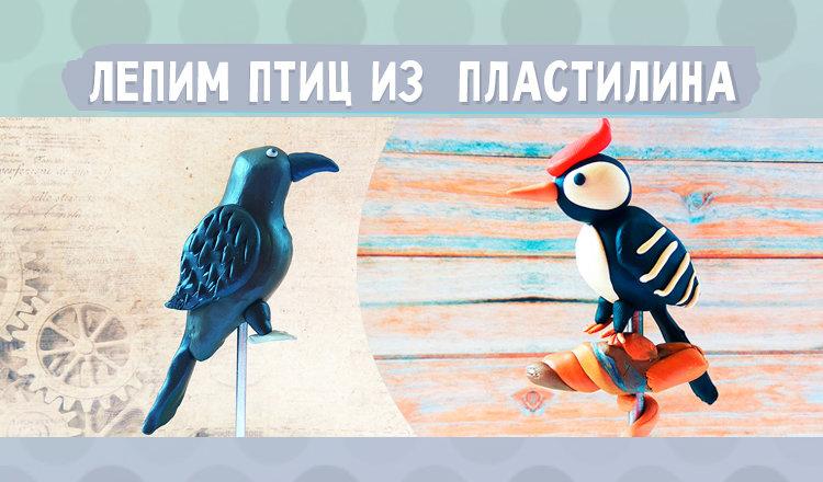 Лепка птиц из пластилина: пошагово с фото