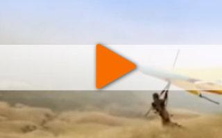 Видео «Каждая птица должна летать». А чей мир можешь изменить ты?