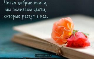 Цитаты и высказывания великих людей о книгах