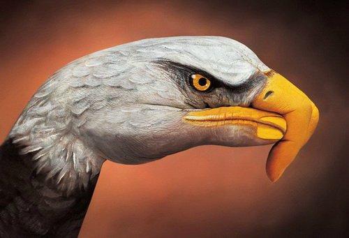 Изображение орла на руках