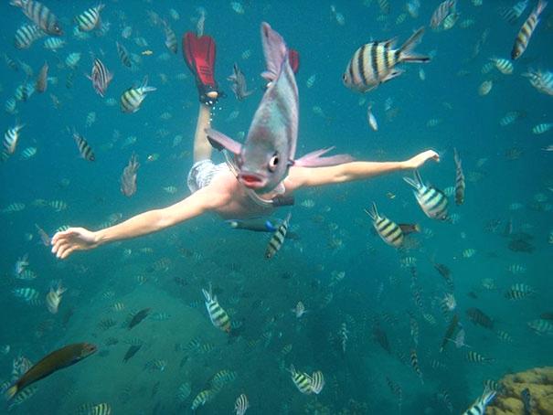 рыба вместо лица