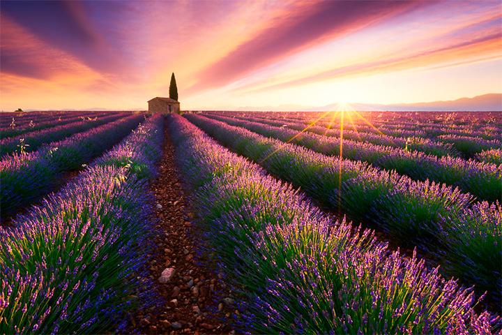 солнце в Провинции Прованс, Франция