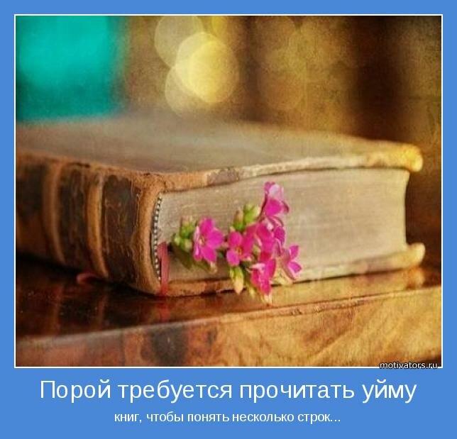 Порой требуется прочитать уйму книг, чтобы понять несколько строк