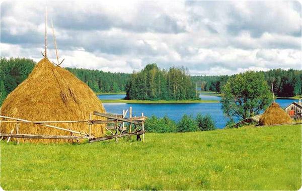 ферма, деревня