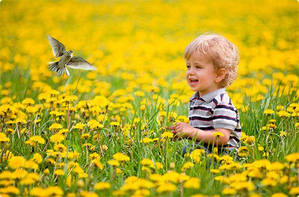 Мальчик и жаворонок