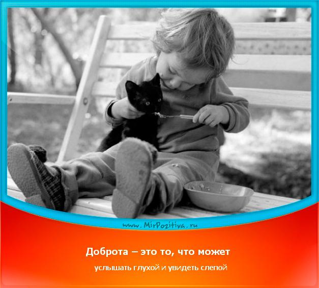 позитивчик дня: Доброта – это то, что может услышать глухой и увидеть слепой