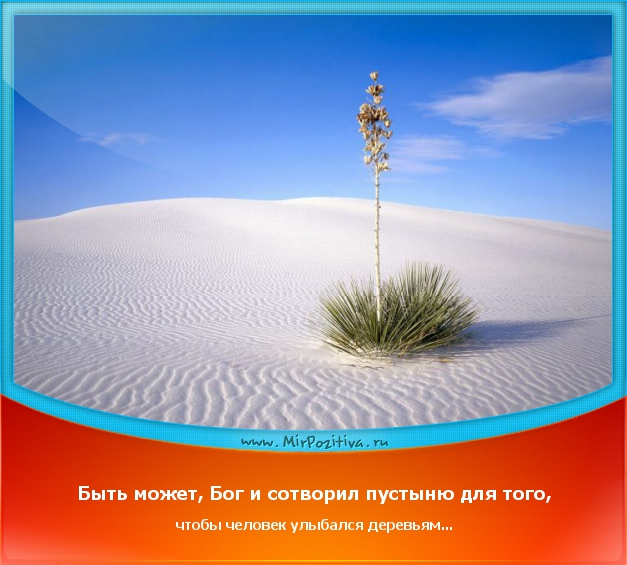 позитивчик дня: Быть может, Бог и сотворил пустыню для того, чтобы человек улыбался деревьям...