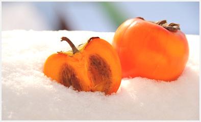 хурма в снегу