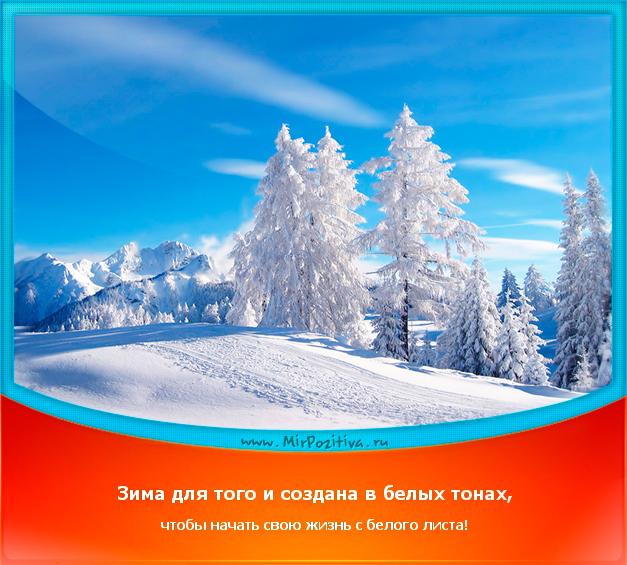 позитивчик дня, мотиватор: Зима для того и создана в белых тонах, чтобы начать свою жизнь с белого листа!