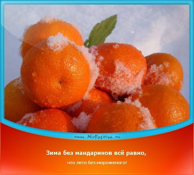 позитивчик дня: Зима без мандаринов всё равно, что лето без мороженого!