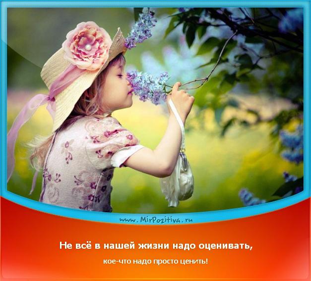 позитивчик дня: Не всё в нашей жизни надо оценивать, кое-что надо просто ценить!