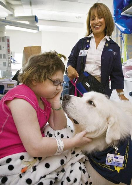 собака видится в больнице с больным