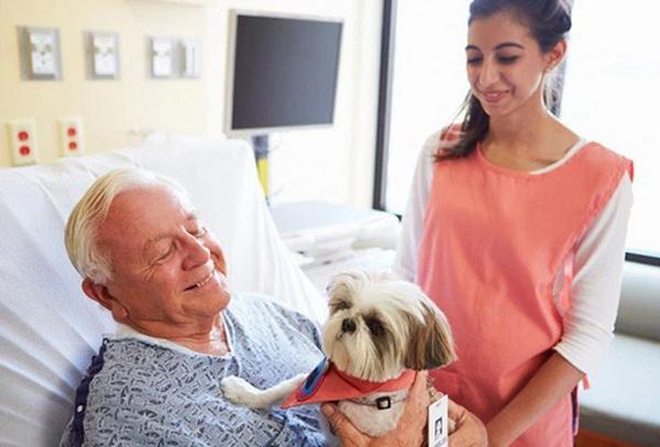 пожилой мужчина и собака в больнице