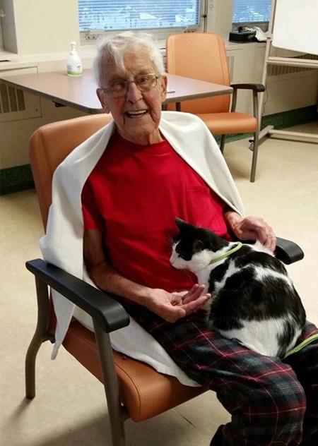кот прижимается к дедушке